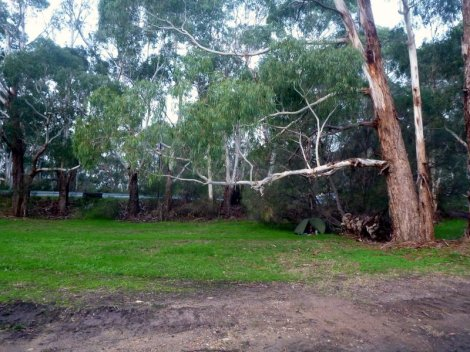 Stealth camp at Mylor, just before Hahndorf, in the local park