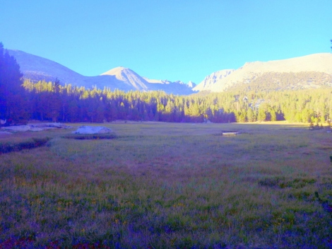 Crabtree Meadow and Mt Whitney.