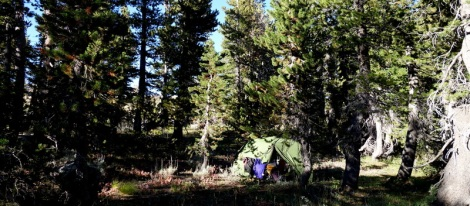 Stealth Camp near Frog Lake