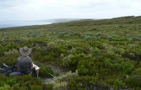 First view of the southern ocean - wind farm in distance