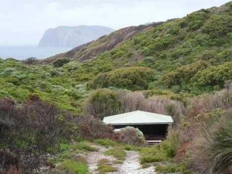 Rame Head Campsite